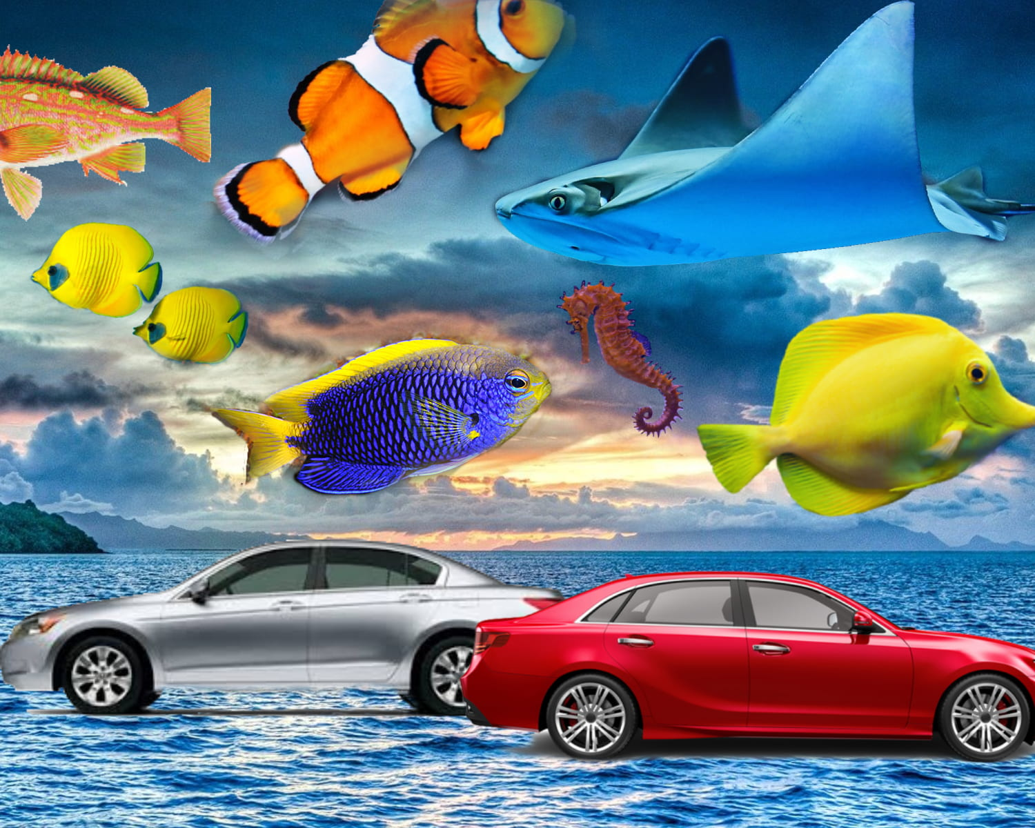 Car on ocean and fish flying